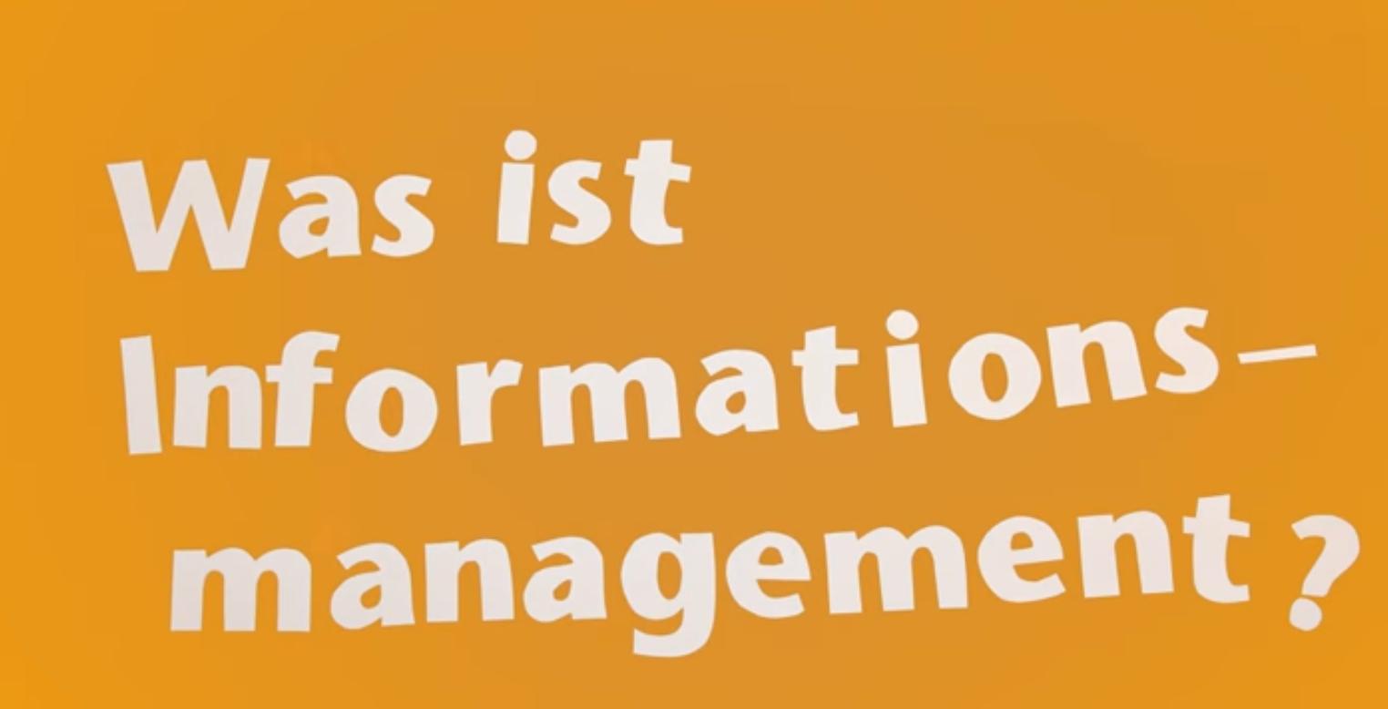 Was ist Informationsmanagement?